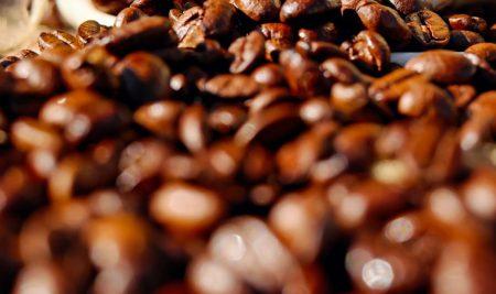 Identify Coffee Defects