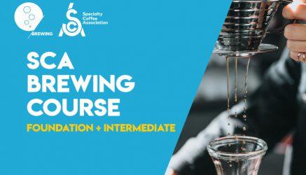 SCA Brewing Foundation + Intermediate