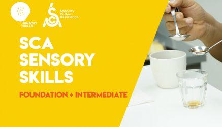 SCA Sensory Skills Foundation + Intermediate