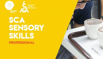 SCA Sensory Skills Professional